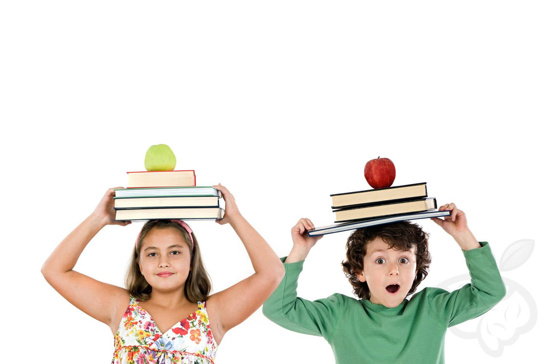 Tecnicas de estudio para padres